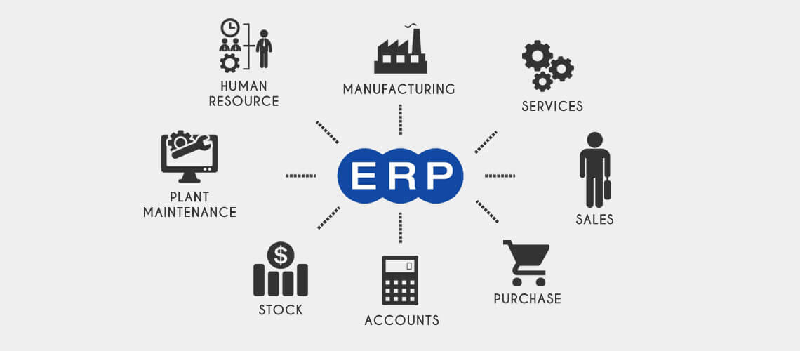 What Are The Typical Components Of ERP? A Business Accounting Software